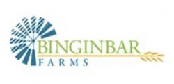 Binginbar